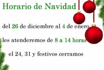 """Horario de Navidad de la Biblioteca Municipal """"Miguel Delibes"""""""
